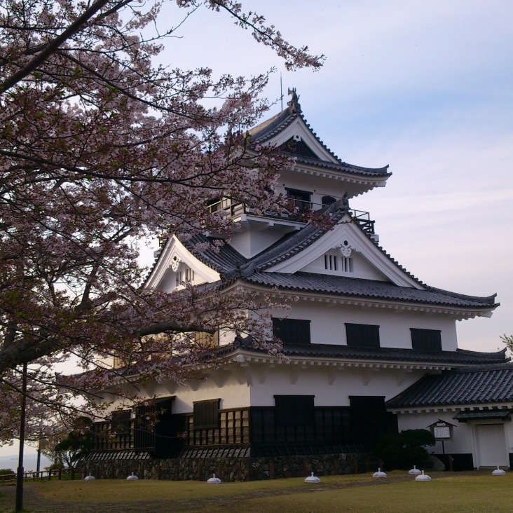 In April, cherry blossoms surround Tateyama castle